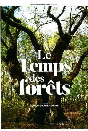 Cartaz do filme O TEMPO DAS FLORESTAS – Le Temps des Forêts
